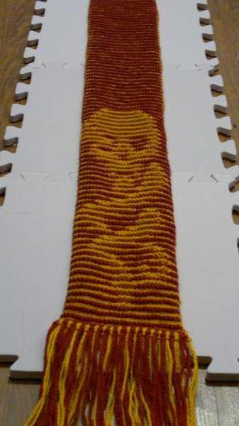 dmscarf2